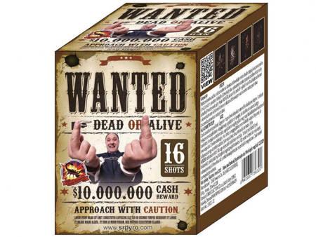 """Wanted 363-2 - 16 strzałów 0.8"""""""